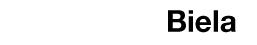 dealer_logo-201102021447.jpg